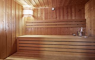 sauna chalet pienz chalet oetztal